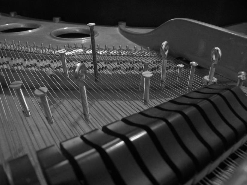 Steinways & Screws: Myers playsCage